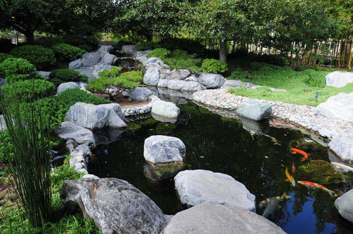 Balboa Park Japanese Gardens